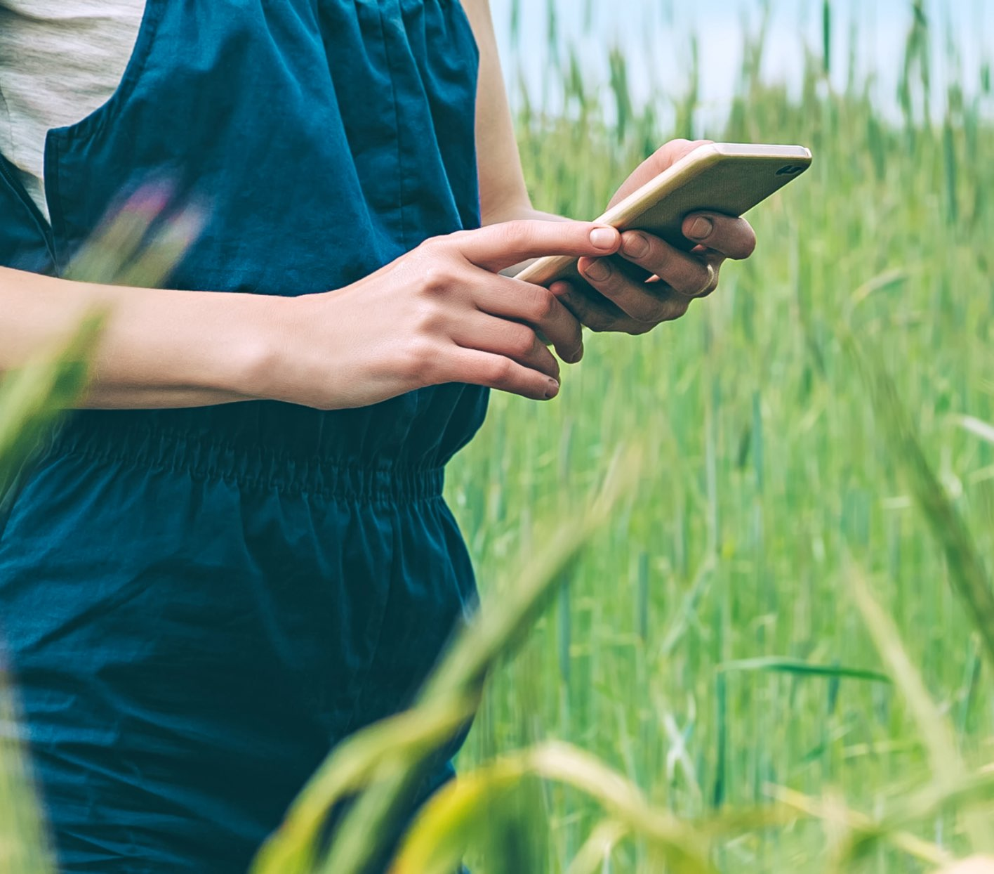 A person standing in grass holding a cell phone