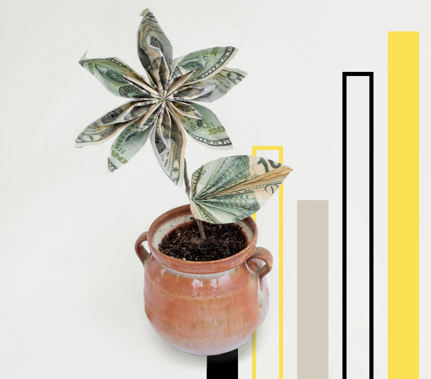 Money flowers growing out of a pot with a chart graphic in the background.